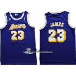 Camiseta Los Angeles Lakers Lebron James #23 Azul